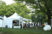A view of the Bai VIP Lounge on day one of The Panorama Music Festival at Randall's Island on July 22 2016 in New York City