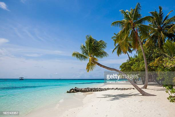 A view of the beach on Athuruga island on May 25 2012 in Athuruga Maldives The Republic of the Maldives consists of 1192 islands and has about 330000...