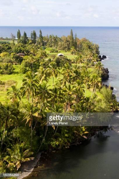 View of the coast at Ke'anae, Road to Hana.