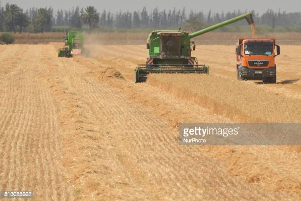 A view of the combine harvesting near Meknes On Friday June 30 in Meknes Morocco