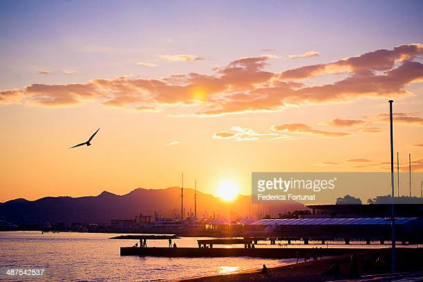 View of the Croisette beach in Cannes at sunset