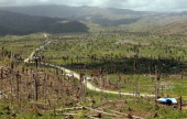 A view of the devastation left by super typhoon Bopha can be seen as the country struggles to rebuild typhoonhit areas on December 30 2012 in Cateel...