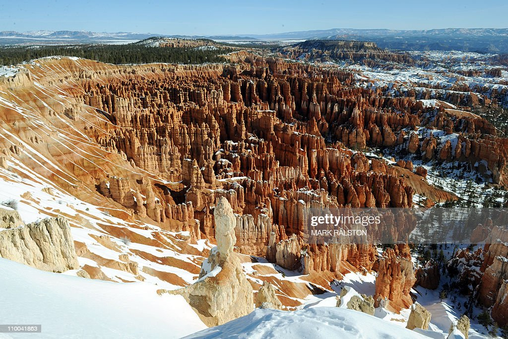 View of the distinctive geological structures called 'Hoodoos' in an amphitheater at the Bryce Canyon National Park Utah on March 11 2011 Bryce...
