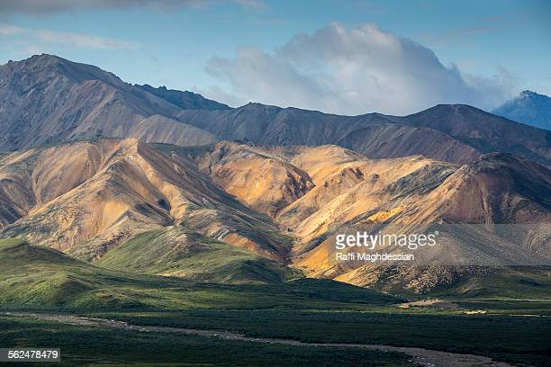 view of the famous polychrom pass in Denali National Park