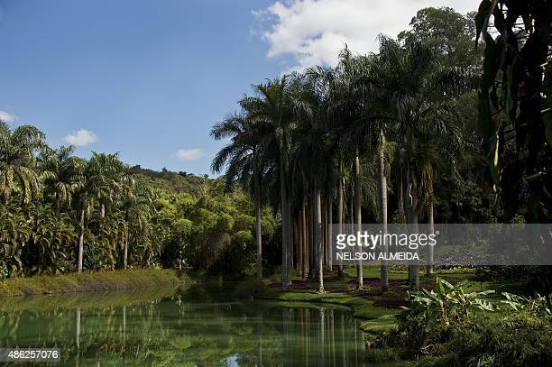 View of the Inhotim Centre for Contemporary Art in Brumadinho some 60 km from Belo Horizonte southeastern Brazil on August 11 2015 Considered the...