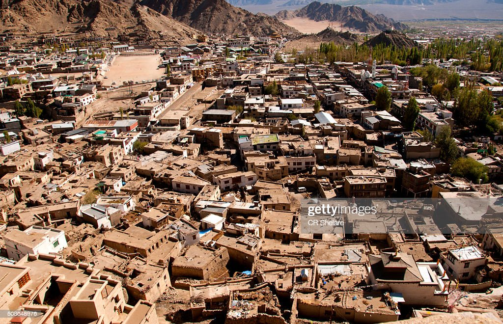 View of the Leh town and the Royal Palace : Stock Photo