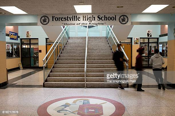 forestville christian singles Looking for a church home in greenville perhaps you're just curious about the christian faith whatever the reason, we hope you can join us soon.