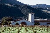 View of the Mondavi vineyards St Helena CA United States circa 1970s