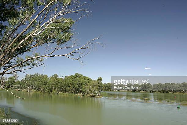 A view of the Murray Darling Junction as reports suggest that inflow to the MurrayDarling Basin are at an all time low now 60 percent lower than the...