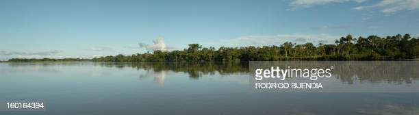 View of the Napo River as it runs through the Yasuni National Park in the Ecuadorean Amazon region 300 km east of Quito on May 16th 2007...