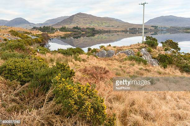 A view of the nature surrounding Garroman Lake near Recess village in Connemara On Tuesday 3 January 2017 in Recess Connemara County Galway Ireland