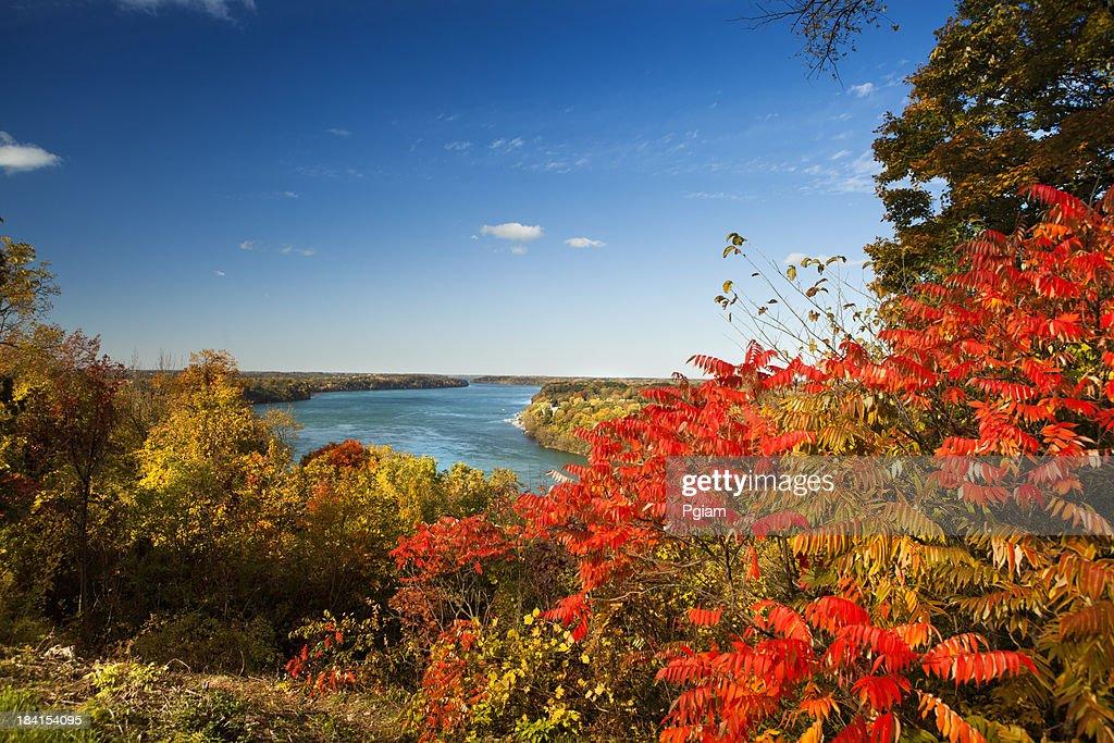 View of the Niagara River
