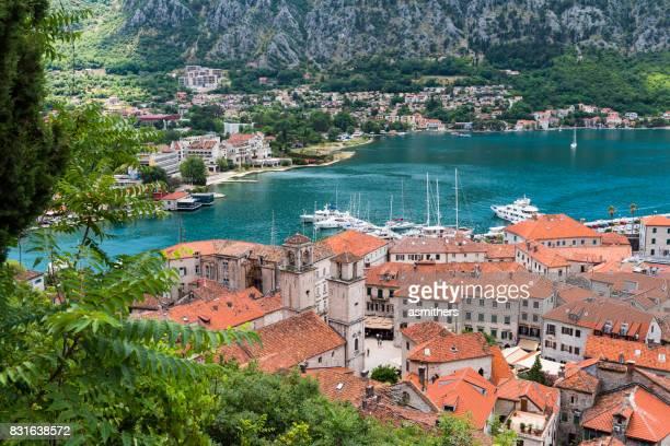 Blick auf die Altstadt von Kotor - Montenegro