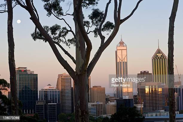 View of the Perth CBD skyline from Kings Park, Western Australia, Australia