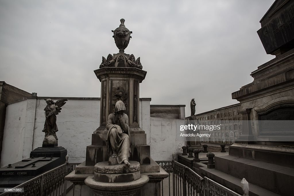 A view of the Presbitero Maestro cemetery as Peruvian Health Ministry personnels (not seen) carry out fumigation against Zika virus in Lima, Peru on February 12, 2016.
