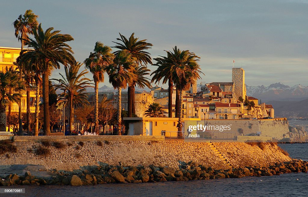 View of the ramparts with palmtrees and the old city of Antibes in the AlpesMaritimes region at sunset with the Alps in the background