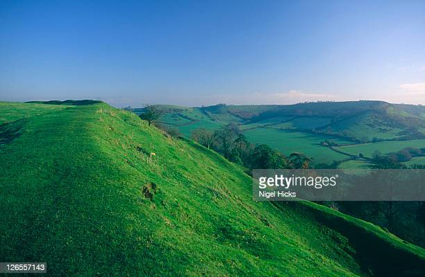 A view of the rolling green countryside around Cadbury Castle in Somerset.