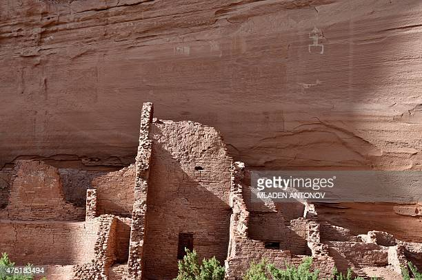 A view of the ruins of an Ancestral Puebloan cliff dwelling at Canyon De Chelly outside Chinle Arizona on May 19 2015 AFP PHOTO/ MLADEN ANTONOV