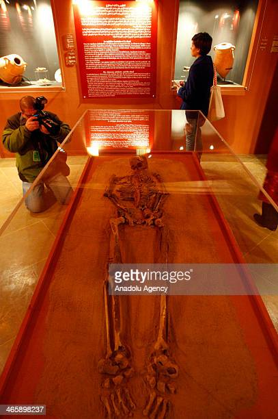 A view of the skeleton 'The Young Phoenician Man of Carthage' is seen during the opening of a special exhibition at the American University of Beirut...