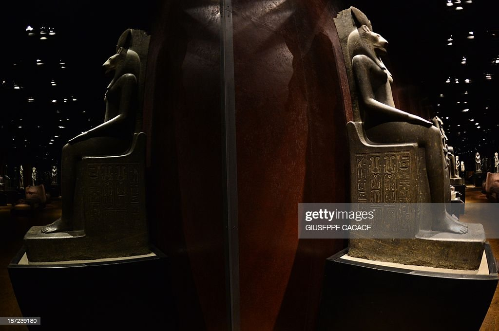 A view of the Statuary room at the Egyptian Museum in Turin taken on November 7, 2013. The 'Museo delle Antichità Egizie' in Turin is the only museum other than the Cairo Museum that is dedicated solely to ancient Egypt art and culture. AFP PHOTO / GIUSEPPE CACACE