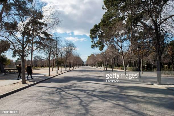 View of the street felipe IV, Madrid