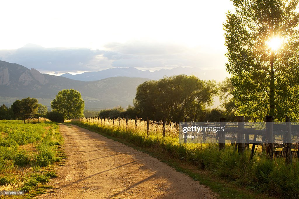 Sunset on the farm : Stock Photo