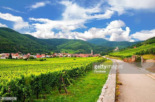View of the village Kaysersberg. Alsace France.