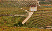 The vineyards of GevreyChambertinIn the village of GevreyChambertin in Burgundy the villagers have become unhappy with the purchase of the castle and...