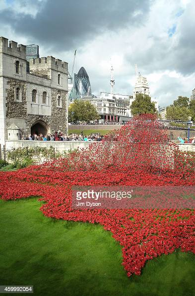 A view of the wave section of the installation BloodSwept Lands and Seas of Red made up of 888246 handmade poppies representing each of the...