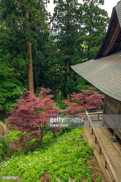 View of the woods from a temple at Yamadera Yamagata City Japan