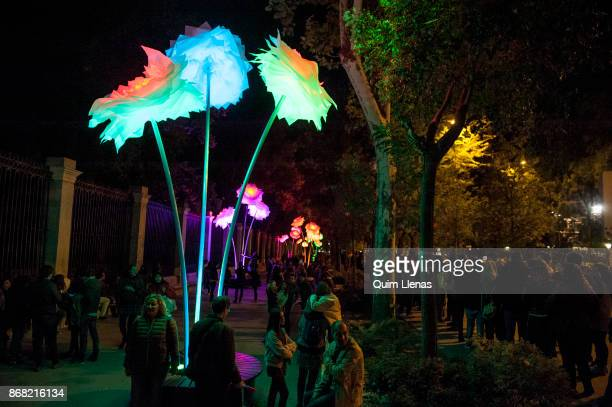 View of the work 'Pivoine couleurs' by the artists of the Tilt Collective located on the side facade of the Royal Botanic Garden during the...