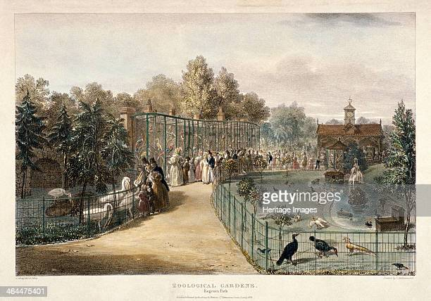 View of the Zoological Gardens in Regent's Park London 1835 showing various birds