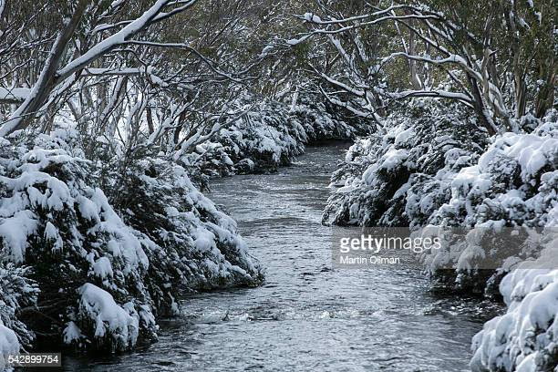 A view of Thredbo River on June 25 2016 in Thredbo Village Australia Snow has been forecast across Eastern Australia as a cold front continues to...