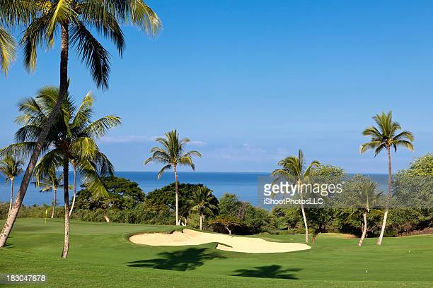 View of tropical golf course by waterfront