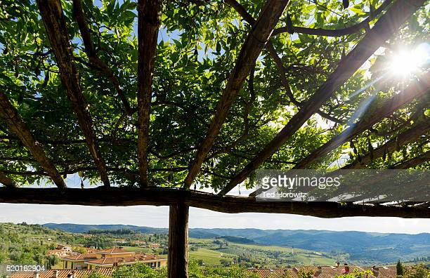 View of Tuscan landscape, under grape arbor, Monticchiello, Italy.