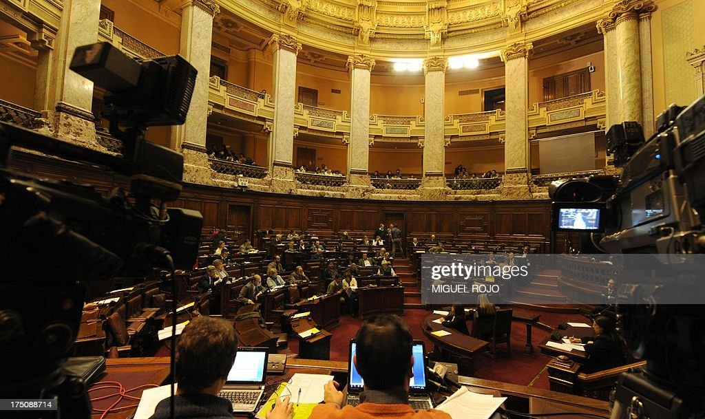 View of Uruguay's lower house during the debate of the bill legalizing marijuana, in Montevideo, on July 31, 2013. Uruguay's lower house Wednesday began debate on a bill legalizing marijuana, which for the first time would put a government in charge of the production, sale and distribution of the drug. AFP PHOTO/ Miguel ROJO