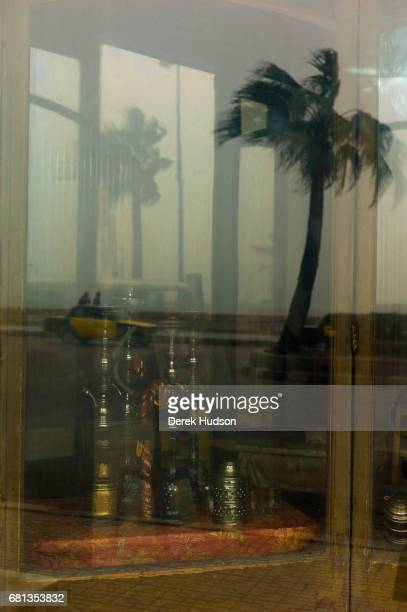 View of water pipes in the window of a cafe which also reflects palm trees on the ElGaish coastal road Alexandria Egypt December 16 2009