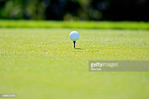 A view of Will Mackenzie of the United States ball on the tee of the 17th hole during the first round of the OHL Classic at Mayakoba on November 13...