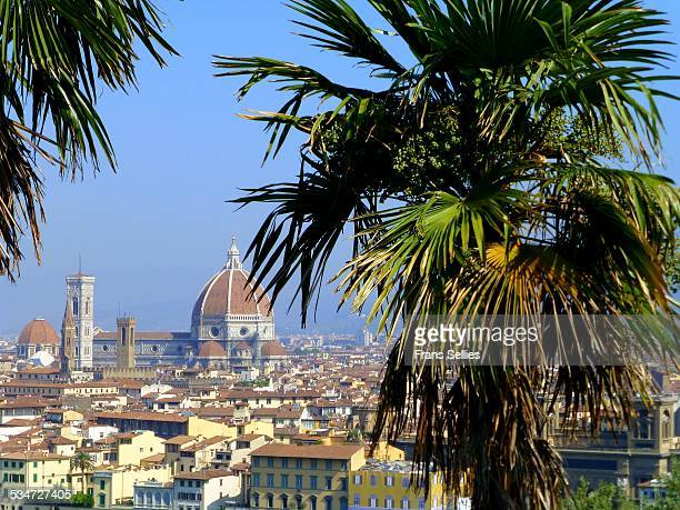 View on Florence and the cathedral, Italy