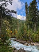 View on Mount Robson from a river flowing from Lake Kinney in British Columbia, Canada.