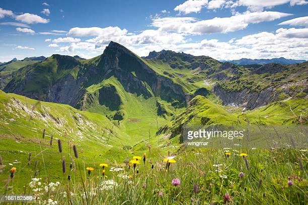 Blick auf den mt. Red lace belt, tannheimer berge, tirol, Österreich