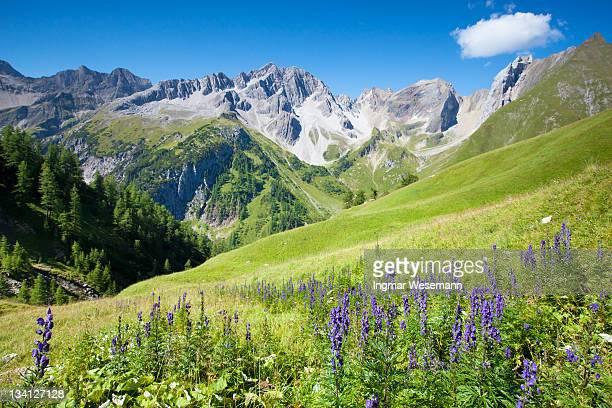 View on the lechtaler alps, tirol, austria