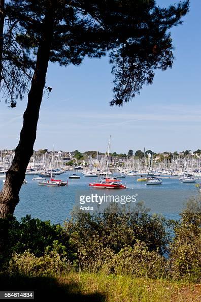View on the marina of la Trinite sur Mer seen from Saint Philibert