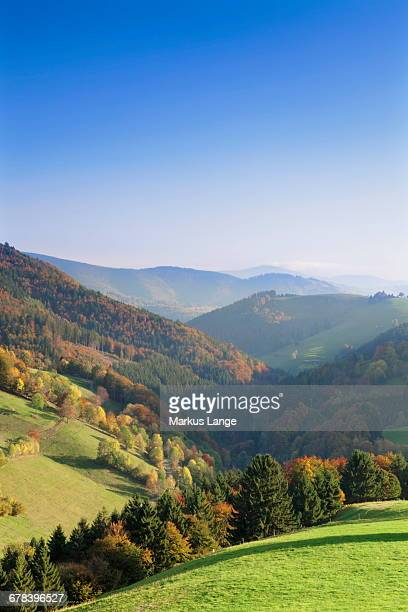 View over a valley in autumn, Wieden, Black Forest, Baden Wurttemberg, Germany, Europe
