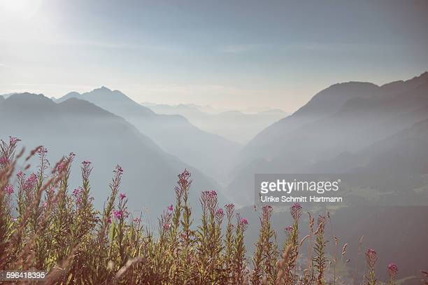 View over Swiss Alps on sunny summer morning