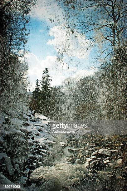Vista a través de la cascada