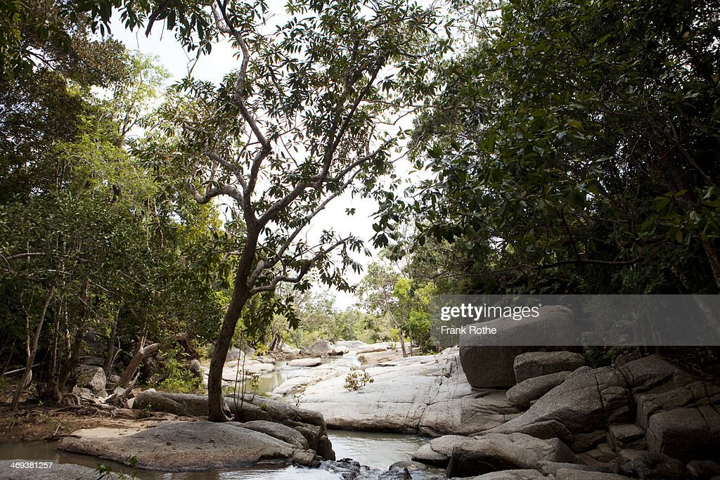 view throughout a nice small river : Stock Photo