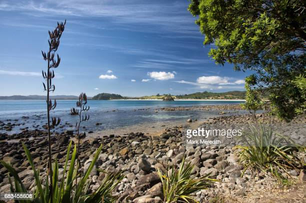 View to Whangapoua beach in the Coromandel