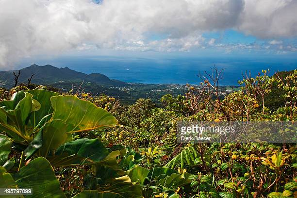 View towards Saint-Claude from La Soufriere volcano, Saint-Claude, Arrondissement of Basse-Terre, Guadeloupe, France