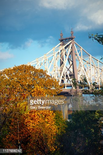 Views of the Ed Koch Bridge Manhattan with Fall Foliage : Foto stock